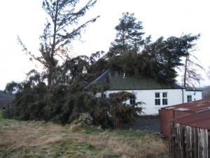 The January 2015 storm that affected this estate